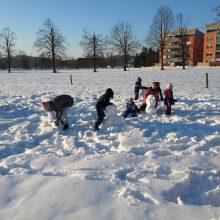 20150211 162006 220x220 - Srečanje na snegu (spomin na mrzle dni)