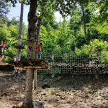 Pustolovski park Postojna 274 220x220 - Miške v Pustolovskem parku Postojna