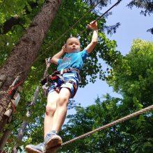 Pustolovski park Postojna 283 220x220 - Miške v Pustolovskem parku Postojna