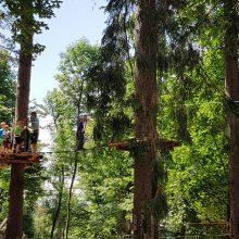 Pustolovski park Postojna 330 220x220 - Miške v Pustolovskem parku Postojna