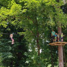 Pustolovski park Postojna 338 220x220 - Miške v Pustolovskem parku Postojna