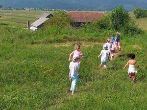 20190605 095132 300x225 - Lisičke in Sovice tečejo Cici-kros